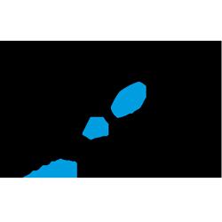 logo_ville-brest_250px