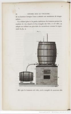Pasteur_vinaigre